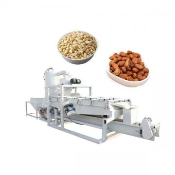 Energy-Saving Air Source Heat Pump Dryer for Food Similar Nature Drying System