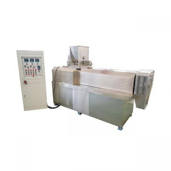 Dayi Fried Chips Snack Extruded Double Extruder Machinery