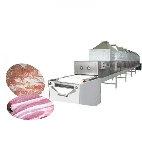 Condiments Agricultural and Sideline Products Microwave Drying Sterilizer Machine