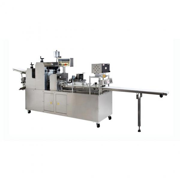 Industrial Project Report Corn Flakes Production Machinery