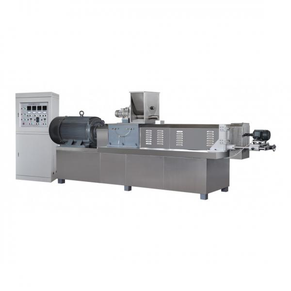 Large Capacity Twin Screw Extruder Pet Food Processing Floating Fish Feed Pellet Machine