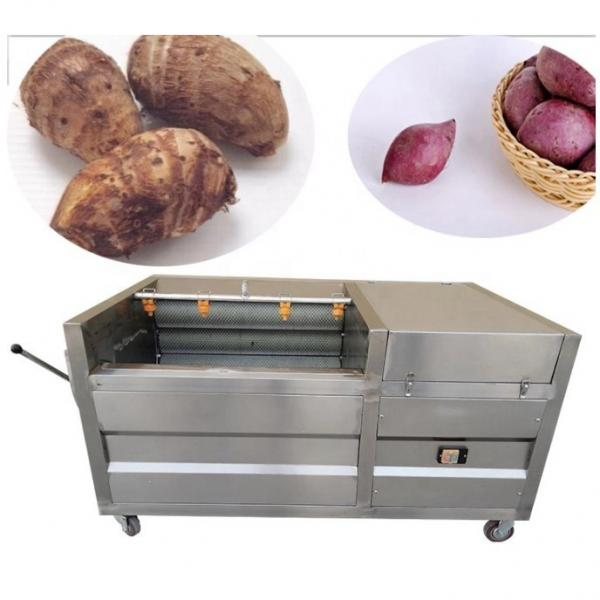 Heat Pump Food Pine Nuts Dryer Hot Air Drying Oven Machine