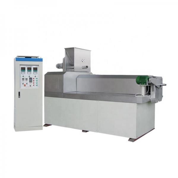 Double Screw Corn Flakes Production Machine with Low Energy
