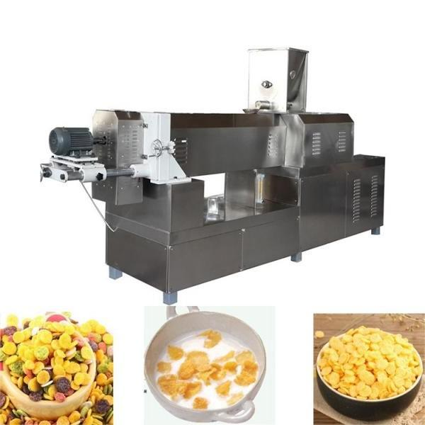 China Supplier Low Cost Extruded Dog Cat Poultry Pet Food Processing Line