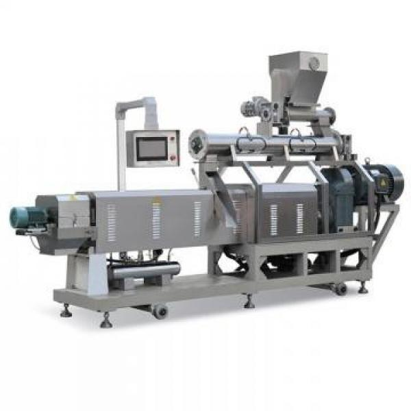 Extruded Fried Snack Food 3D Flour Bugles Chips Making Machine