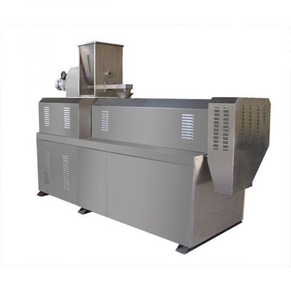 extruded fried snacks pellet chips and fries extruder making machines