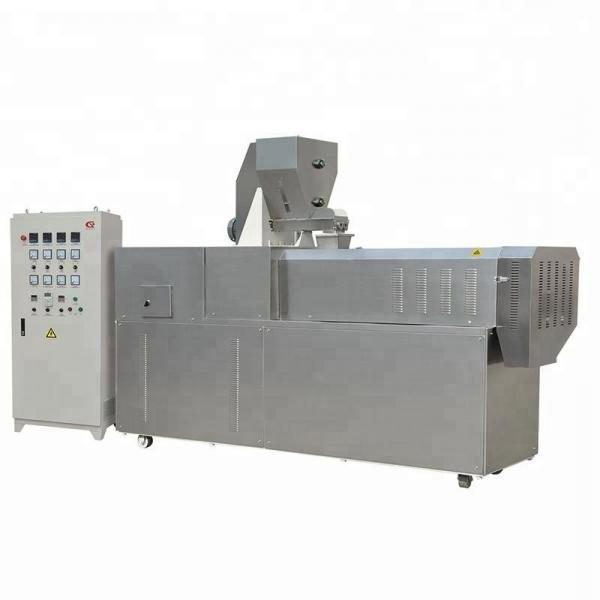Twin Screw Extruder Rice Crackers Chips Making Machinery