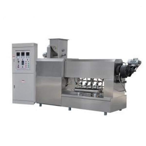 pani puri production line Indian 3D snack food pellet chips frying making extruder machine