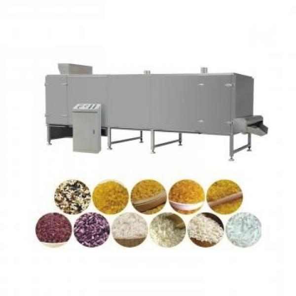 twin screw extruder puffed corn snack food puffing machinery supplier