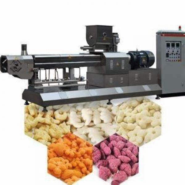 Professional Factory Supply Pet Food Fish Feed Production Line